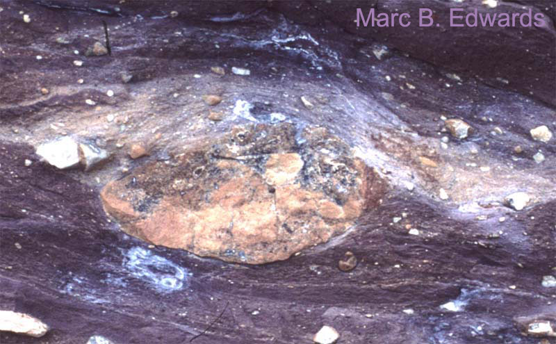Rounded dolomite clast with attached triangular-shaped mass of dolomitic diamictite in pressure shadow zone (right).