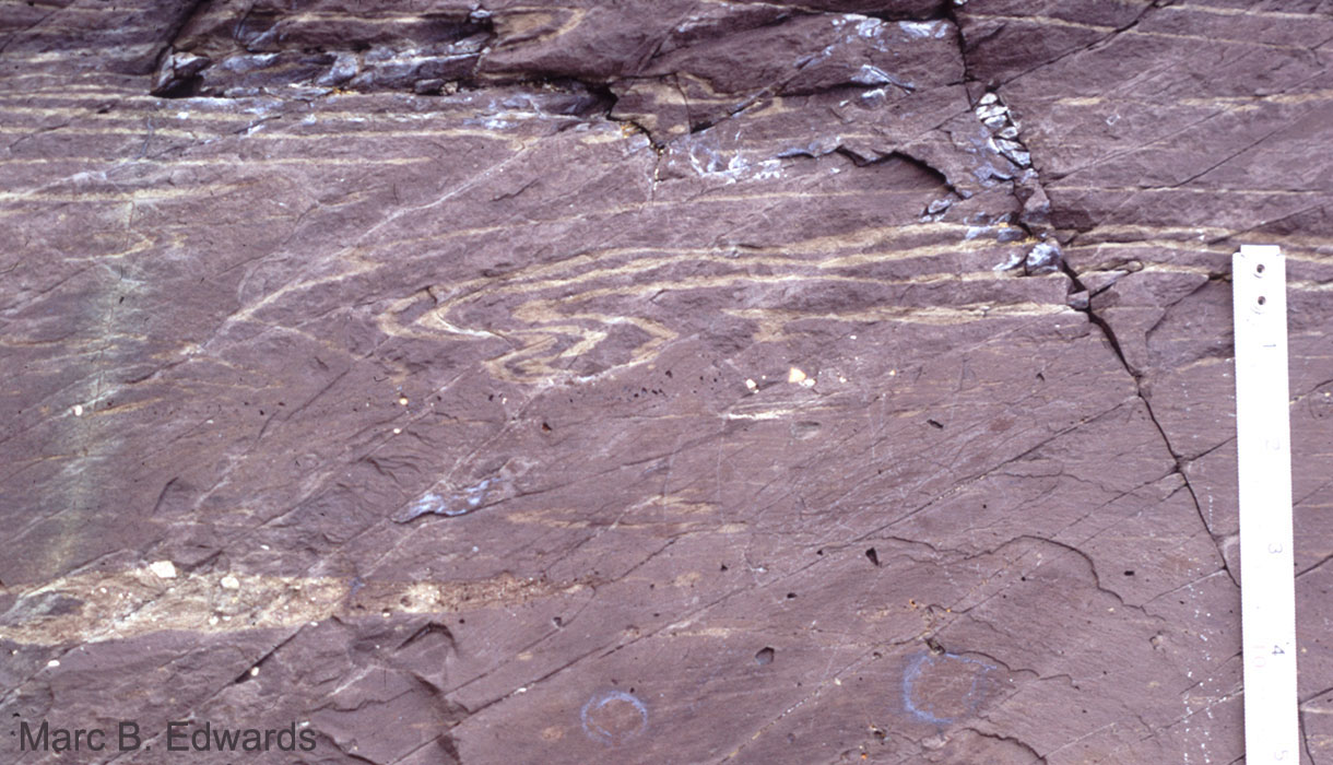 Fold structures in banded diamictite, Smalfjord Formation, Tarmfjord.