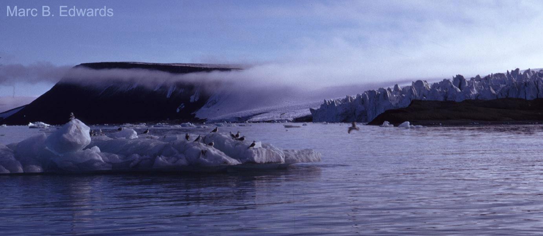 An Arctic glacial scene by Palanderbuktet, Svalbard.